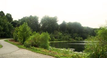 Artemesia Lake